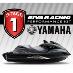 Kit Riva stage 1 FZR/FZS 09-13