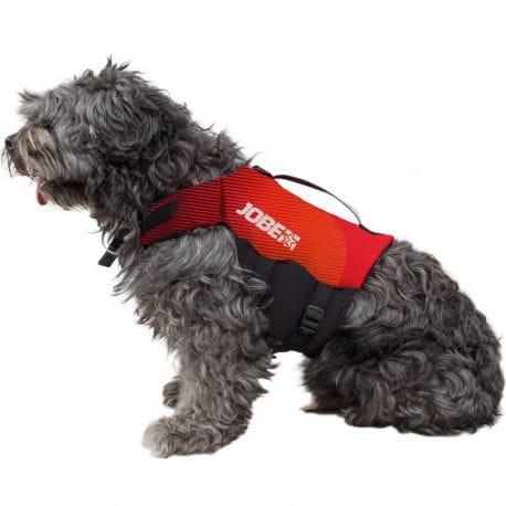 Gilet de sauvetage JOBE pour chien