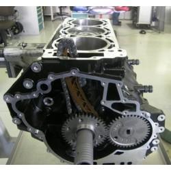 Bloc moteur (short bloc) 1600 EASY RIDER