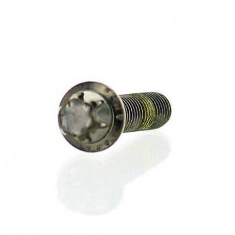 Torx Flanged Screw M6 x 25