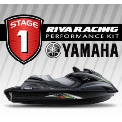 Kit Riva stage 1 FZR/FZS 09-13